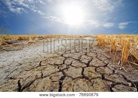 Dry Earth In The Dry Season In Thailand
