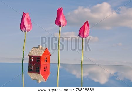 Red Small House Model On Mirror Ant Tulip Flowers