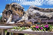 foto of recliner  - Flowers offered to the reclining Buddha of Wat Lokaya Sutha - JPG