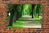 pic of green wall  - broken brick wall and view to Summer city park with green trees - JPG
