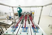 picture of frozen food  - frozen food packing and sorting industry equipment - JPG