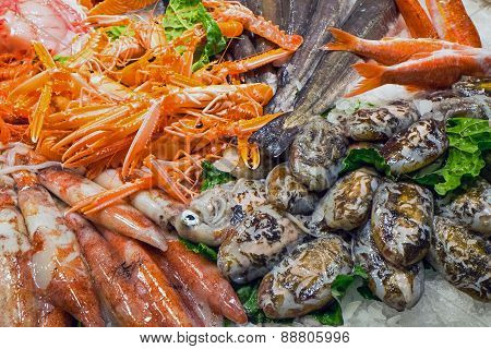 Seafood and fish at a market