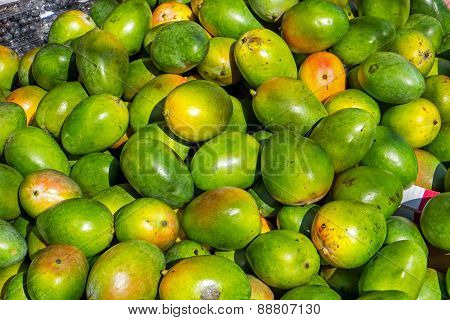 Mangos for sale at a market