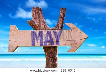 May wooden sign with beach background