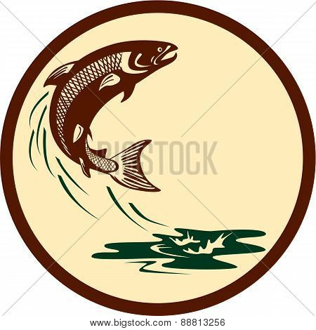 Atlantic Salmon Fish Jumping Water Retro