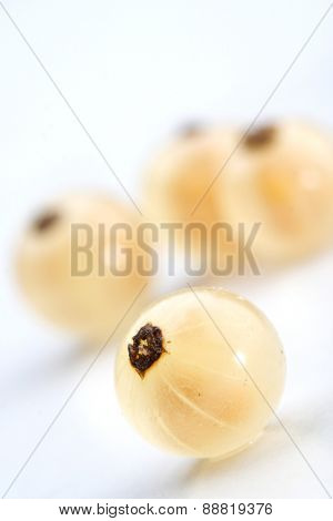 Close up of white currants