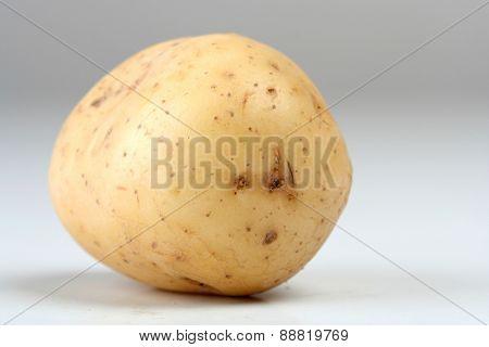 Close up of potato on white backround