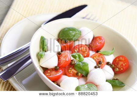 Close of tomato and mozarella in dish