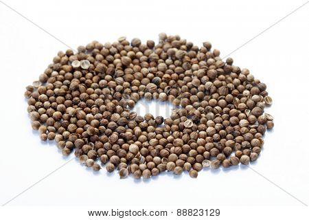 Close up of mustard seeds
