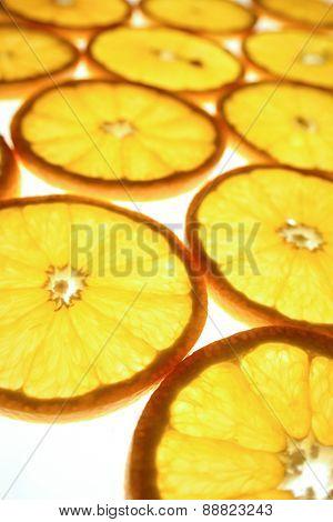 Studio shot of orange cutted in slices