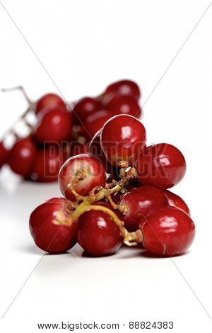 Sudio shot of grapes on white background