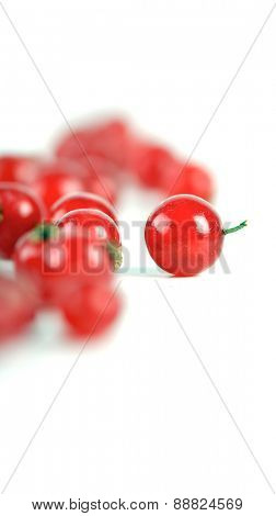 Close-up of redcurrants on white background