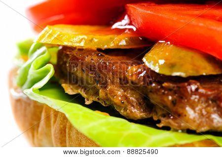 single fresh realistic looking pork hamburger closeup