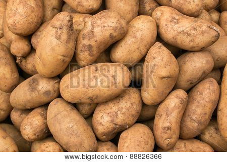Fresh organic young potatoes