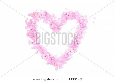 Heart Shape Made From Pink Petals And Blossoms