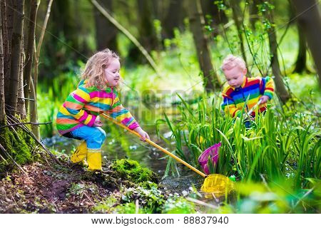 Kids Playing With Frog