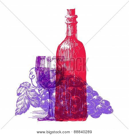 winemaking, wine on a white background. sketch