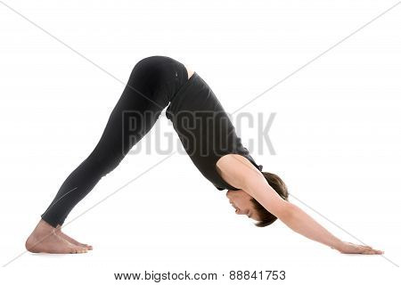 Yoga Pose Downward-facing Dog
