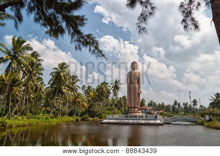 Buddha Statue Stands On The Water.