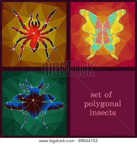 Set Of Polygonal Insects