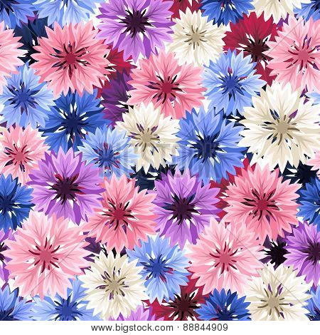 Seamless pattern with colorful cornflowers. Vector illustration.