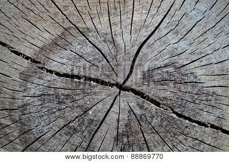 Wood As Background