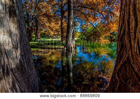 Rest Amid the Beautiful Fall Foliage on the Guadalupe River, Texas.