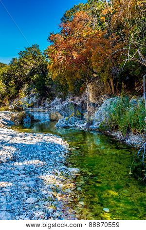 Beautiful Fall Foliage on Maple Trees Surrounding a Clear Creek in Texas