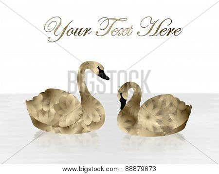 Gold and Black Swans on White Background