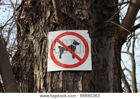 Sign prohibiting dog walking
