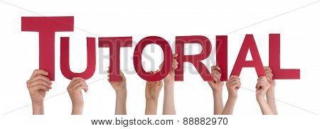 Many People Hands Holding Red Straight Word Tutorial