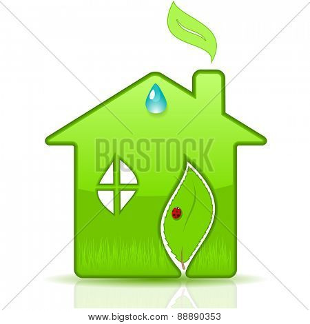 Eco House. Vector illustration.