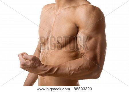Biceps Muscle Of Young Man