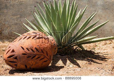 Ceramic decorative jug at yucca. Garden decor.
