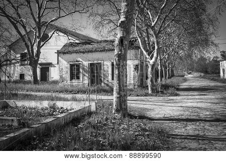 monochrome of an abandoned village