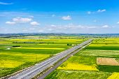 stock photo of rape-seed  - Aerial view of road passing through a rural landscape with blooming rape in northern Greece - JPG