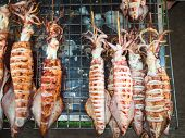 stock photo of squid  - Image of BBQ Grilled squids on stick - JPG