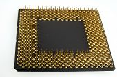 image of microprocessor  - Gold pins microprocessor seen close up on white background - JPG