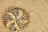 stock photo of bap  - close up of a poppy seed roll on greaseproof paper - JPG