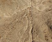 picture of sand gravel  - Small gravel stones texture background - JPG