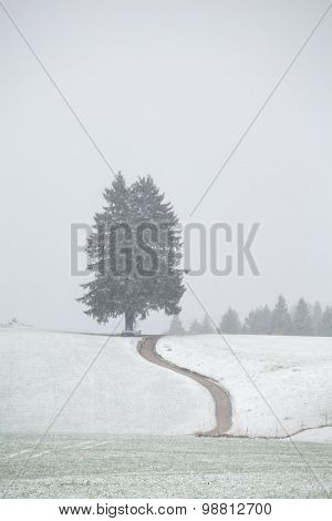 Path On Snow Hills During Snowstorm