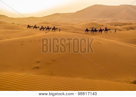 Dunes Erg Chebbi near Merzouga, Morocco -Camels caravan during a tour into the erg at sunset