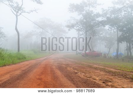 The Way In The Fog