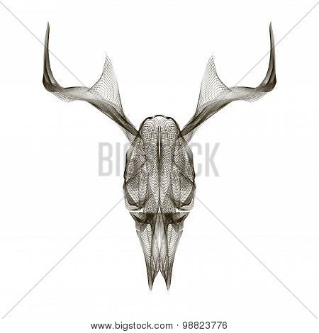 Deer skull. 3d style vector for print, tattoo, t-shirt.