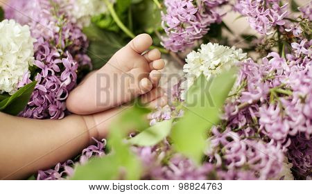 Cute little newborn baby's foot in flowers
