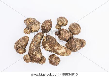 Taro (colocasia)