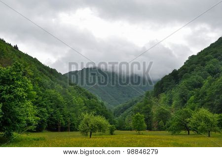The Nature Of The Carpathian Mountains
