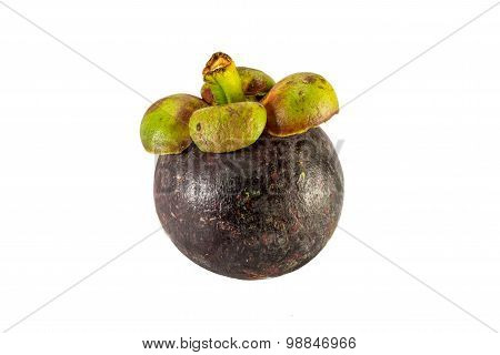 Purple Mangosteen Fruit Isolate On White Background