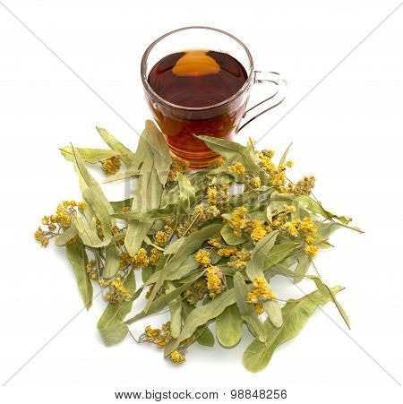 Flowers Of A Linden And Transparent Mug Of Lime Tea