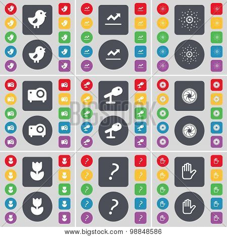 Bird, Graph, Star, Projector, Microphone, Lens, Flower, Question Mark, Hand Icon Symbol. A Large Set